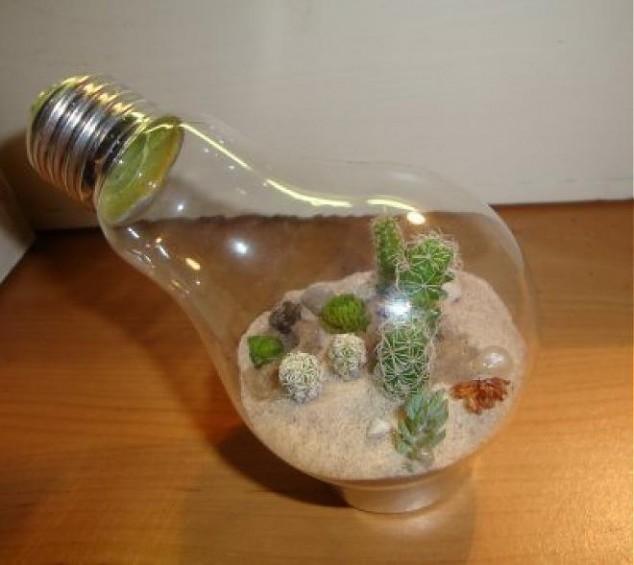 Фото в лампочке своими руками